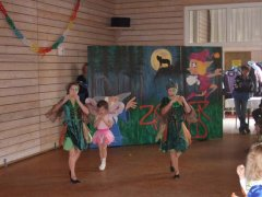 fb_kinderball_tv_halle_2011_066.jpg